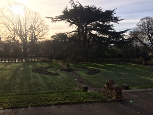 Winter Insole Terrace Garden