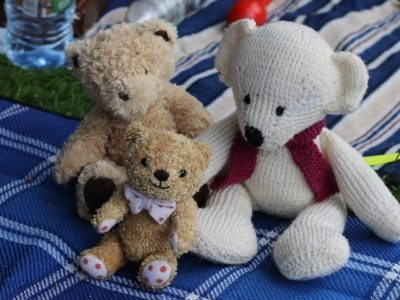 Insole Court Friends thank Llandaff traders for their support in making 2018 the best Teddy Bears' Picnic ever!