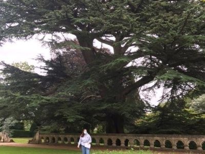 My experience in Insole Court – By Daisy Curle