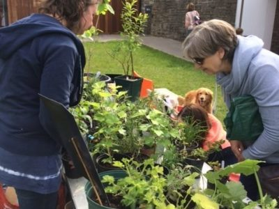 Annual Gardening Bring & Buy Sale