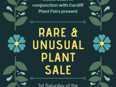 Cardiff Council Monthly Plant Sale at Insole Court