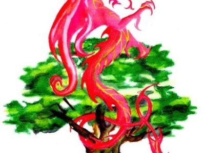 DragonOak Magical workshops
