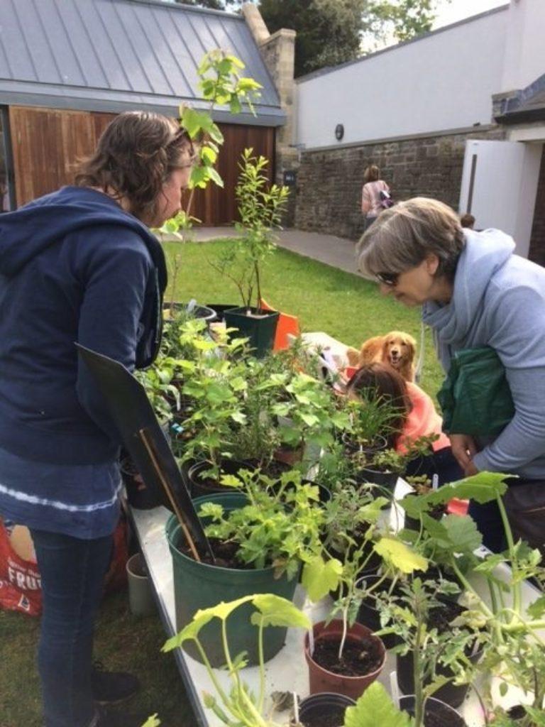 Promo image: Annual Gardening Bring & Buy Sale