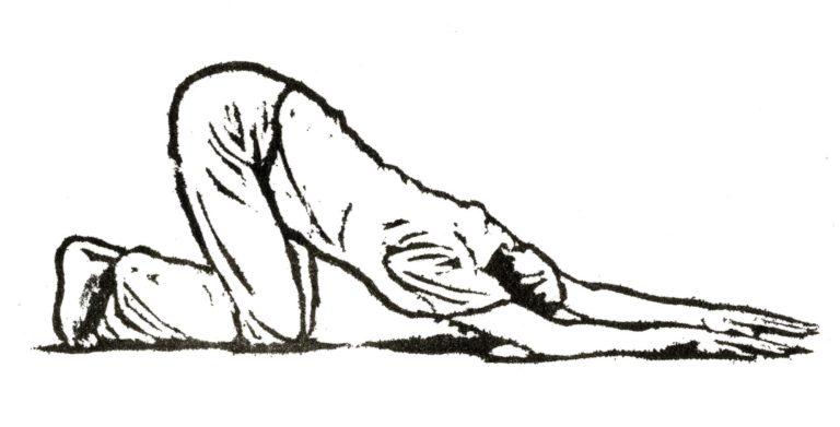Promo image: Restorative yoga and meditation one day course