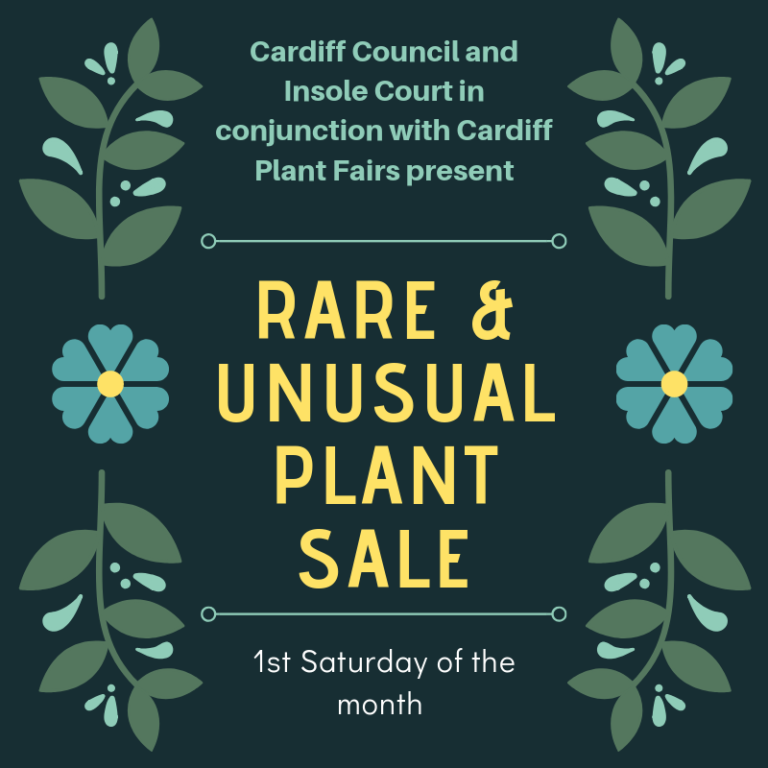Promo image: Cardiff Council and Insole Court in conjunction with Cardiff Plant Fairs present a Monthly Rare & Unusual Plant Sale